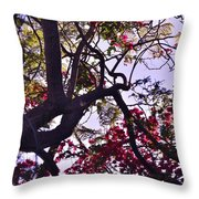 Late Afternoon Tree Silhouette With Bougainvilleas IIi Throw Pillow