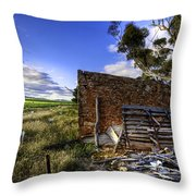 Late Afternoon Throw Pillow