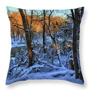 Late Afternoon Winter Light Throw Pillow