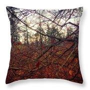 Late Autumn Morning Throw Pillow