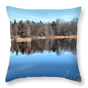 Late Autumn Reflections Throw Pillow