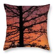 Late Autumn Sunset Throw Pillow