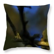 Late Fall Color 6493 Throw Pillow