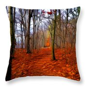 Late Fall In The Woods Throw Pillow