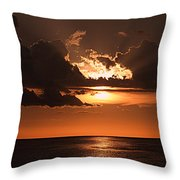 Late In The Day 1 Throw Pillow