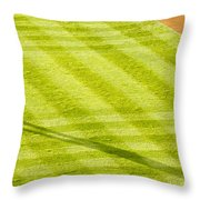 Late In The Day Shadow Throw Pillow