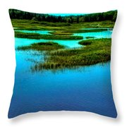 Late May On The Moose River Throw Pillow