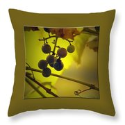 Late Season Throw Pillow
