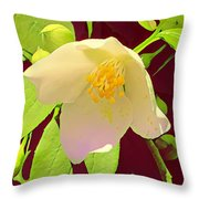 Late Spring Flower Throw Pillow