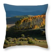 Late Stand Throw Pillow