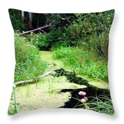 Late Summer At The Creek Throw Pillow