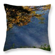 Late Summer Rays Of Sunshine Throw Pillow