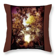Late Summer View Of Sky And Trees Throw Pillow
