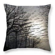 Late Winter Afternoon Throw Pillow