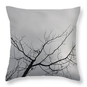 Late Winter Clouds Throw Pillow