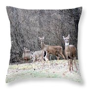 Late Winter Whitetails Throw Pillow