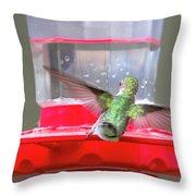 Later Hummingbird Throw Pillow