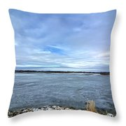 Later Winter Ice 3 Throw Pillow