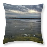 Later Winter Ice Throw Pillow