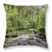 Lathkill River Throw Pillow
