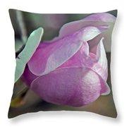 Lathrop California Throw Pillow