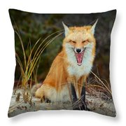 Laughing Fox Throw Pillow