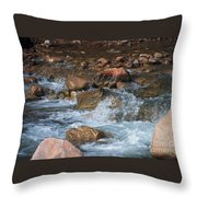 Laughing Water Throw Pillow