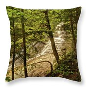 Laughing Whitefish Falls 2 Throw Pillow by Michael Peychich