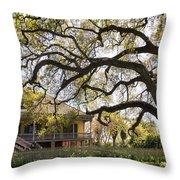 Laura Plantation  Throw Pillow