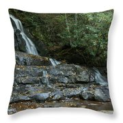 Laurel Falls 2 Throw Pillow