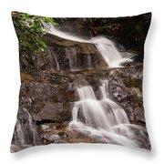 Laurel Falls Five Throw Pillow