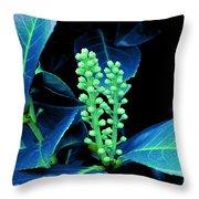 Laurel Flower Buds Throw Pillow