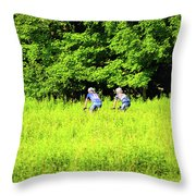 Laurel Hill Park Road Throw Pillow