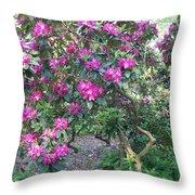 Laurel Mountain Tree Throw Pillow