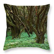 Laurisilva 1 Throw Pillow