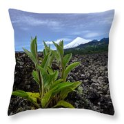 Lava And Villa Rica Volcano Throw Pillow