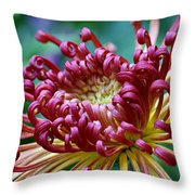 Lava Chrysanthemum Throw Pillow