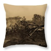 Lava Devastation  Throw Pillow