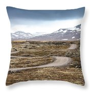 Lava Field In Iceland Throw Pillow