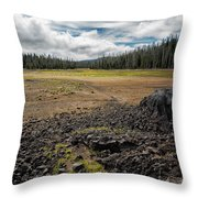 Lava Flow At Hand Lake Throw Pillow