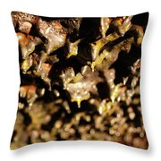 Lava Tube Cave Throw Pillow