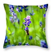 Lavander Flowers With Bee In Lavender Field Macro Artmif Throw Pillow
