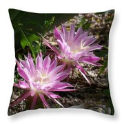Lavendar Cactus Flowers Throw Pillow