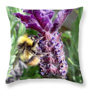Lavender And Busy Bee. Throw Pillow