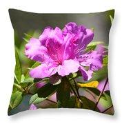 Lavender Rhododendrun Throw Pillow