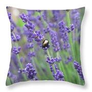 Lavender Beetle Throw Pillow