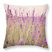 Lavender Blossom Throw Pillow