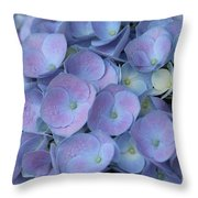 Lavender Blue Hydrangea Throw Pillow