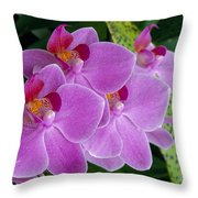 Lavender Colored Orchids Throw Pillow