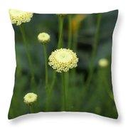 Lavender Cotton Throw Pillow
